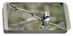 Backyard Blue Jay Portable Battery Charger