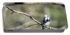 Backyard Blue Jay Oil Portable Battery Charger
