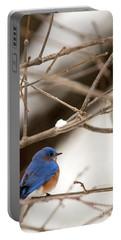 Backyard Bluebird Portable Battery Charger
