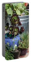 Backyard Garden Series IIi Portable Battery Charger