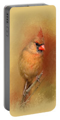 Backyard Jewel Portable Battery Charger by Jai Johnson