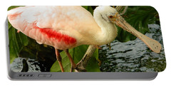 Balancing Act - Roseate Spoonbill Portable Battery Charger