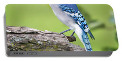 Bald Blue Jay- It Must Be August Portable Battery Charger