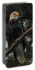Portable Battery Charger featuring the photograph Bald Eagle by Glenn Gordon