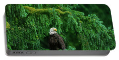 Portable Battery Charger featuring the photograph Bald Eagle In Temperate Rainforest Alaska Endangered Species by Dave Welling