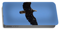 Bald Eagle Juvenile Soaring Portable Battery Charger