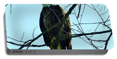 Bald Eagle Over The Root River Portable Battery Charger