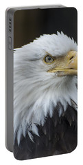 Bald Eagle Portrait Portable Battery Charger by Gary Lengyel