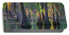 Baldcypress Trees, Louisiana Portable Battery Charger