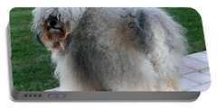 ball of fur Havanese dog Portable Battery Charger by Sally Weigand
