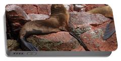 Portable Battery Charger featuring the photograph Ballestas Island Fur Seals by Aidan Moran