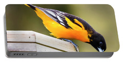 Portable Battery Charger featuring the photograph Baltimore Oriole About To Jump by Ricky L Jones
