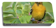 Baltimore Oriole Closeup Portable Battery Charger