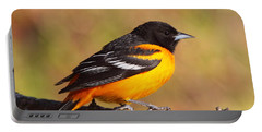 Baltimore Oriole IIi Portable Battery Charger