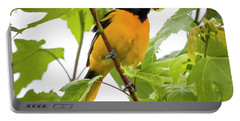 Portable Battery Charger featuring the photograph Baltimore Oriole With Raspberry  by Ricky L Jones