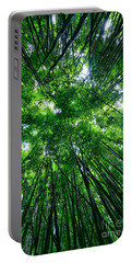 Bamboo Forest Portable Battery Charger