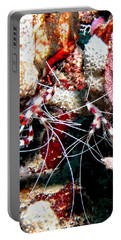 Banded Coral Shrimp - Caught In The Act Portable Battery Charger
