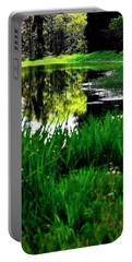 Portable Battery Charger featuring the photograph Bank And Reflections 1074 by Jerry Sodorff