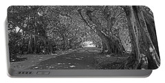 Banyan Street 2 Portable Battery Charger by HH Photography of Florida