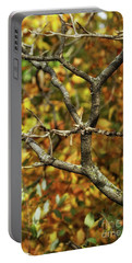 Bare Sumac Tree Portable Battery Charger