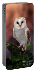 Barn Owl At Sunset Portable Battery Charger