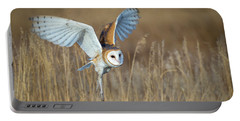 Barn Owl In Grass Portable Battery Charger