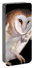 Barn Owl Portable Battery Charger by Jean Noren