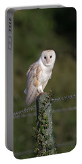 Barn Owl On Ivy Post Portable Battery Charger