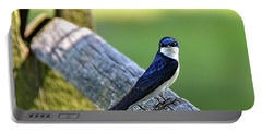 Barn Swallow Looking Angry Portable Battery Charger