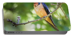Barn Swallow  Portable Battery Charger