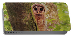 Barred Owlet Portable Battery Charger