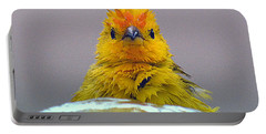 Portable Battery Charger featuring the photograph Bath Time Finch by Lori Seaman
