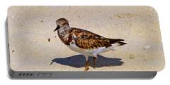 Portable Battery Charger featuring the photograph Beach Bird by Francesca Mackenney