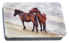 Portable Battery Charger featuring the photograph Beach Buddies by Lois Bryan