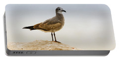 Portable Battery Charger featuring the photograph Beach Pose by Deborah Benoit