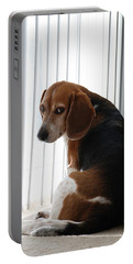 Beagle Attitude Portable Battery Charger