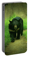 Bear On The Prowl Portable Battery Charger by Trish Tritz
