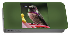 Beautiful Anna's Hummingbird On Perch Portable Battery Charger