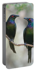 Starlings Portable Batteries Chargers