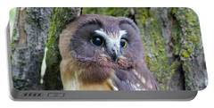 Beautiful Eyes Of A Saw-whet Owl Chick Portable Battery Charger
