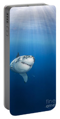 Beautiful Great White Portable Battery Charger