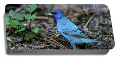 Beautiful Indigo Bunting Portable Battery Charger