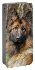 Portable Battery Charger featuring the photograph Beautiful Jessy by Sandy Keeton