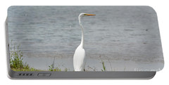 Portable Battery Charger featuring the photograph Beautiful Male Egret by Maria Urso
