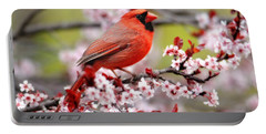Beautiful Northern Cardinal Portable Battery Charger by Trina Ansel