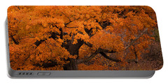 Beautiful Orange Tree On A Fall Day Portable Battery Charger by Joni Eskridge