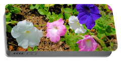 Beautiful Petunia Flower 3 Portable Battery Charger