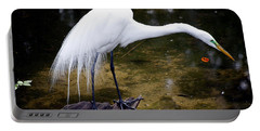 Beautiful Plumage Portable Battery Charger