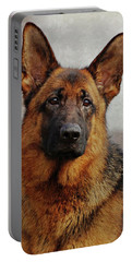 Portable Battery Charger featuring the photograph Beautiful Raven by Sandy Keeton