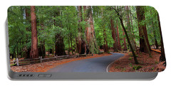 Beautiful Redwood Grove Portable Battery Charger